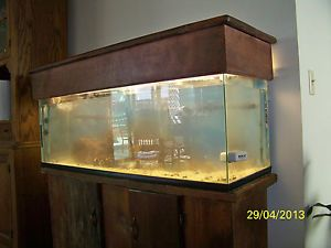 Fish Tank 60 Gallon with Wood Stand Cover Two Filters Heater Light Supplies