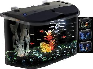 Aquarium Fish Tank Aquarius Rounded 5 Gallon Acrylic Aquarium Kit w LED Filter