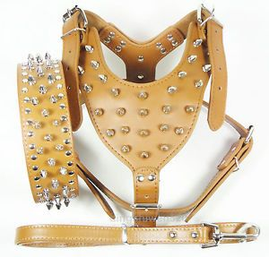 Brown Leather Dog Harness Collar Leash Set Spikes Studded Pitbull Mastiff