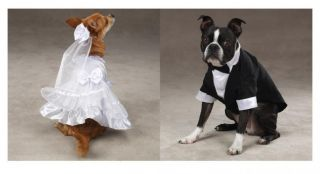 Bride and Groom Costumes for Dogs Halloween Dog Costume