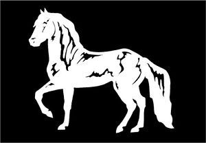 Horse Decal Paso Finao Equestrian Car Truck Window Trailer Sticker Graphic
