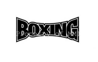 Boxing Style 1 Vinyl Decal Car Truck Window Wall Laptop Fight Ring Glove Locker
