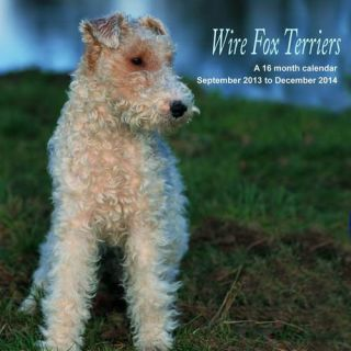 Wire Fox Terriers 2014 Wall Calendar