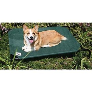 New Large Coolaroo Pet Dog Bed Mesh Raised Steel Bed Durable Indoor or Outdoor