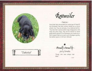 Rottweiler Personalized Pet Memorial Poem Story Wall Art Decor Print 6 Designs