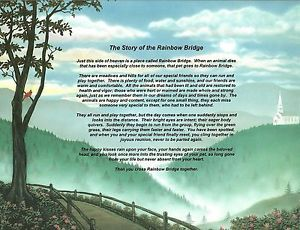 Pet Memorial Blueridge Mountains The Story of The Rainbow Bridge Poem