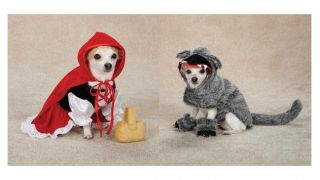 Little Red Riding Hood Big Bad Wolf Costumes for Dogs Halloween Dog Costume