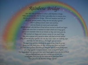 Rainbow Bridge Poem Printing & Personalization