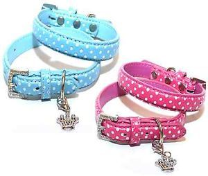 X Small Dog Collar Pink or Blue Polka Dots Chihuahua Puppy Cat Clothes XS S