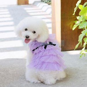 Pet Dog Puppy Purple Layered Tulle Skirt Dress Clothing Clothes Cocktail Party S