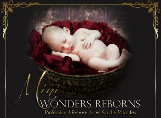 "Mini Wonders Reborn Baby Boy ""Melody"" by Laura Tuzio Ross"