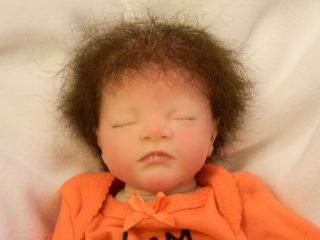 Reborn Preemie Biracial Doll Caleb Kit by Heather Boneham Human Hair