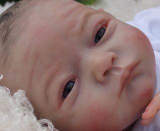 Beautiful Reborn Baby Boy Doll Will Sam's Reborn Nursery Limited Edition