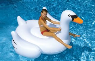 Swimming Pool Giant Swan Ride on Inflatable Pool Float Toy Swimline Huge 75 Inch