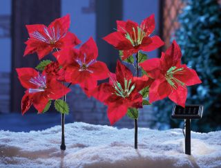 Set of 2 Solar Power Lighted Poinsettia Lawn Yard Stakes Outdoor Decor Christmas