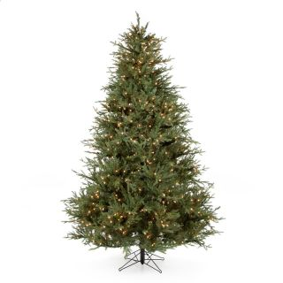 Itasca Frasier Fir Pre Lit Christmas Tree   Christmas Trees