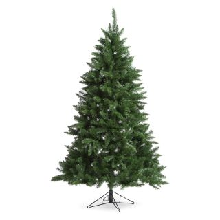7 ft. Fairmont Pine Unlit Christmas Tree   Christmas Trees