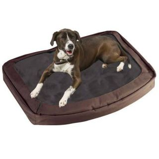 Bergan Pet Products The Dogs Bed   Dog Beds