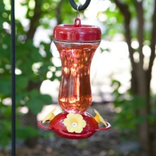 Perky Pet 16 oz. Glass Top Fill Hummingbird Feeder   Bird Feeders