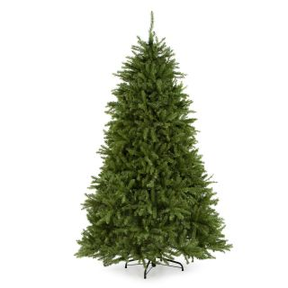 Dunhill Fir Full Unlit Christmas Tree   Christmas