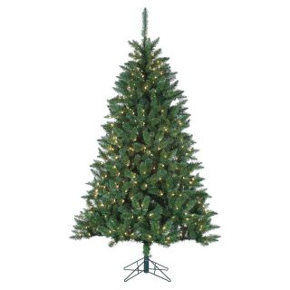 7 ft. Pre Lit LED Fairmont Pine Christmas Tree   Christmas Trees